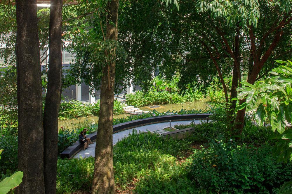 campus green bench.jpg