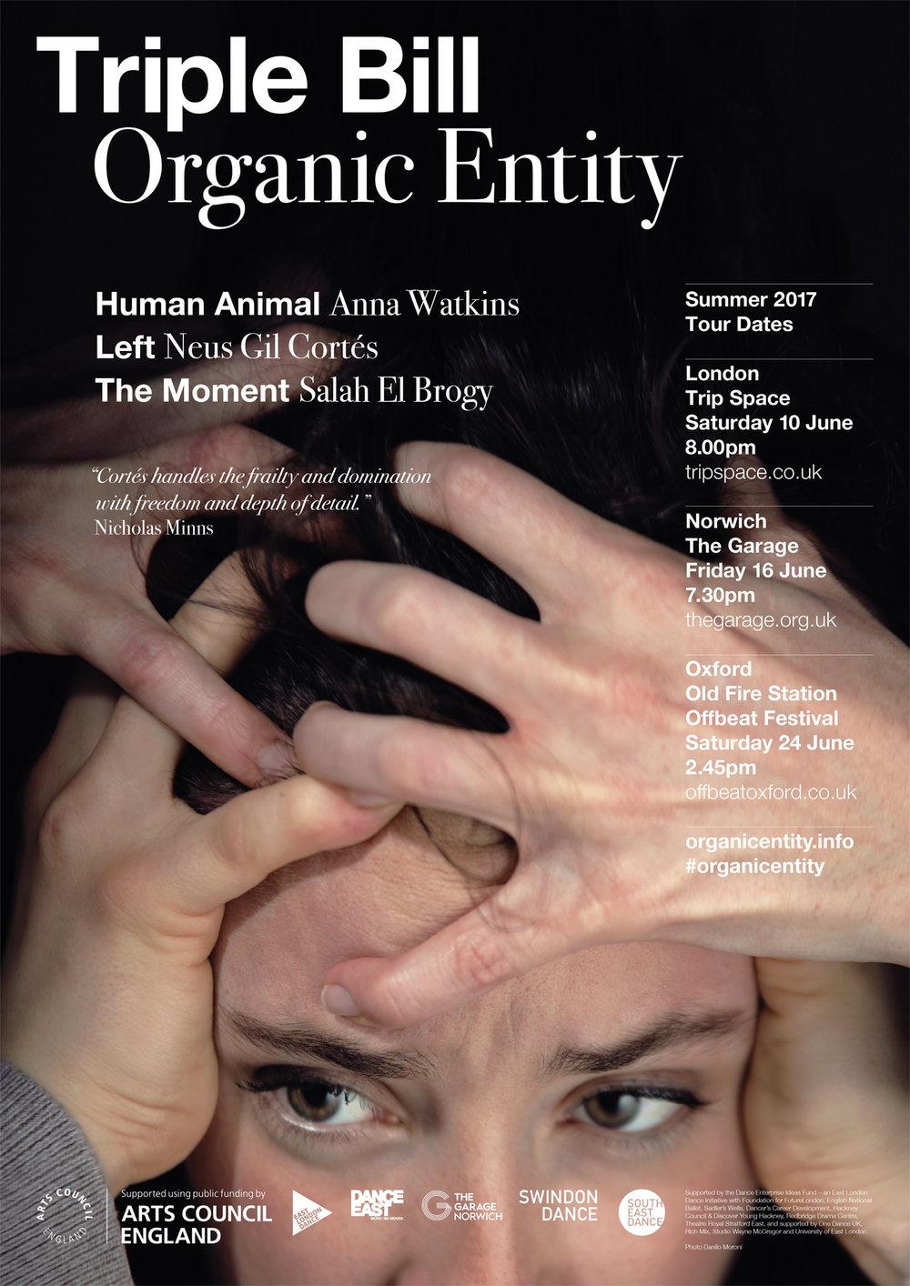 ORGANIC ENTITY - NEUS GIL CORTÉS