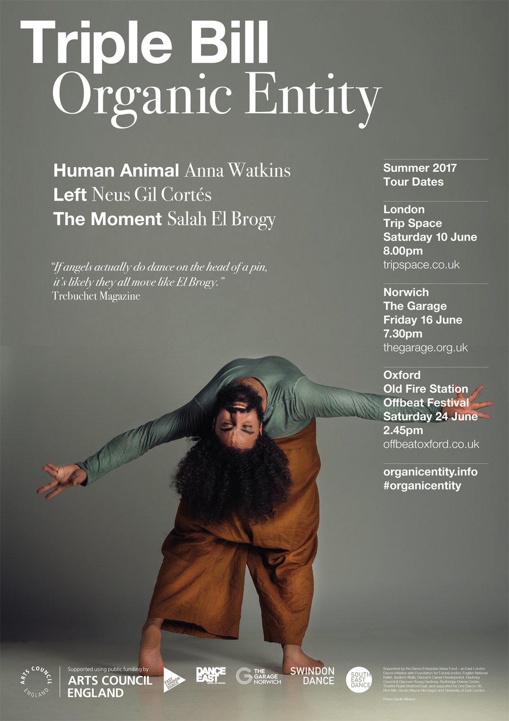 ORGANIC ENTITY - SALAH EL BROGY