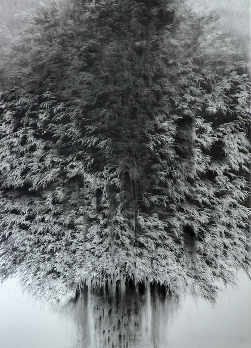 Giulia Dall' Olio,  g 19][73 d , 2017, Charcoal on paper, 39 x 27.5 inches