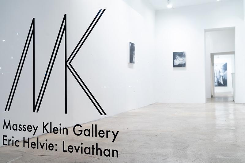 Installation view: Eric Helvie Leviathan
