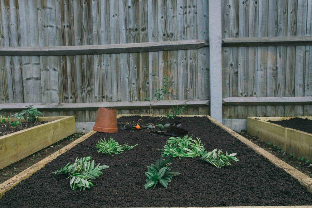 Beacon-Garden-The-White-House-300317-IndreNeiberkate-8.jpeg