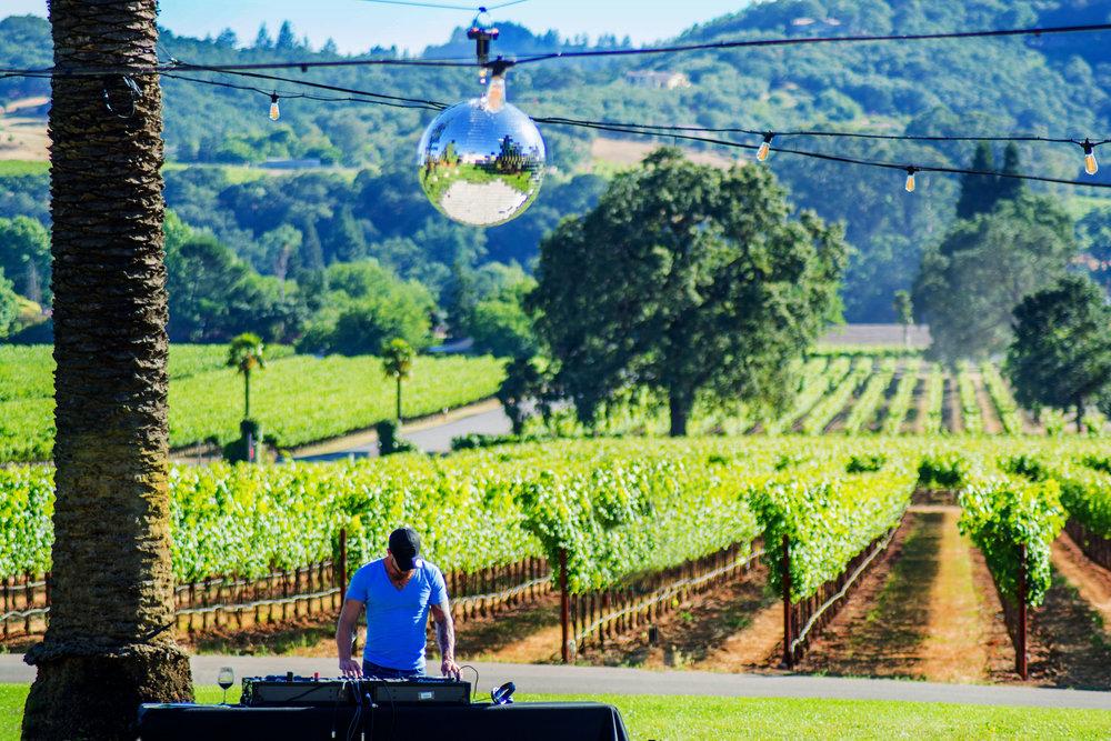 Vineyard DJ copy.jpg