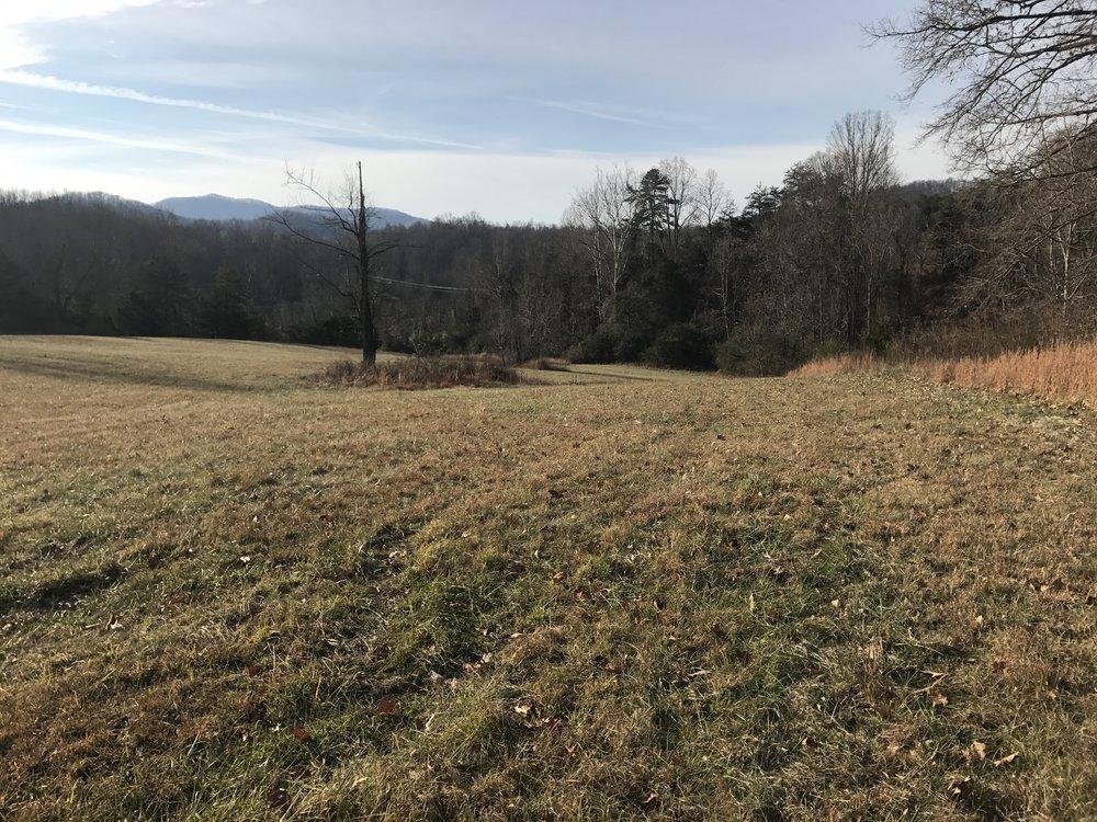 Land Field 12.12.16.JPG