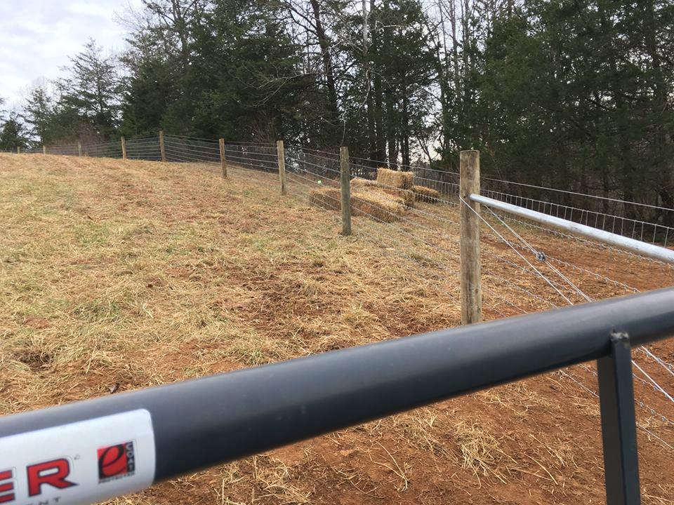 Fence 12.30.17.jpg