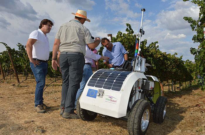 Robots in the Vines