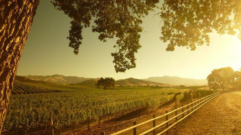 11 Big-Name California Rhône Picks