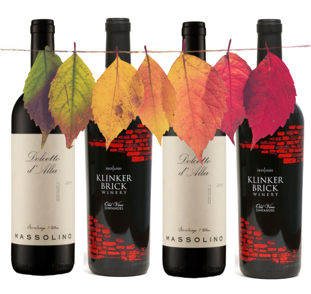 A Wine Expert Shares The Best, Most Surprising Things To Sip This Fall