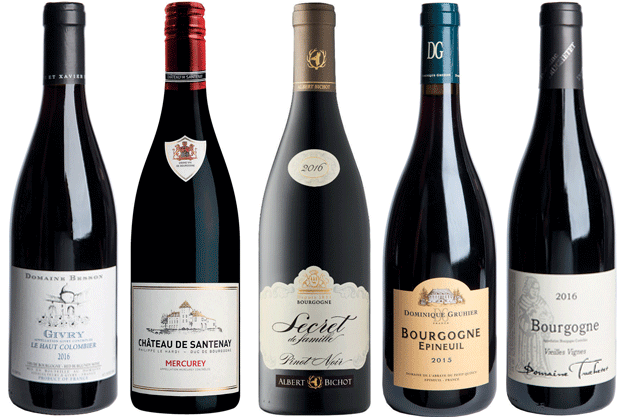 Good value red Burgundy: 32 wines to seek out