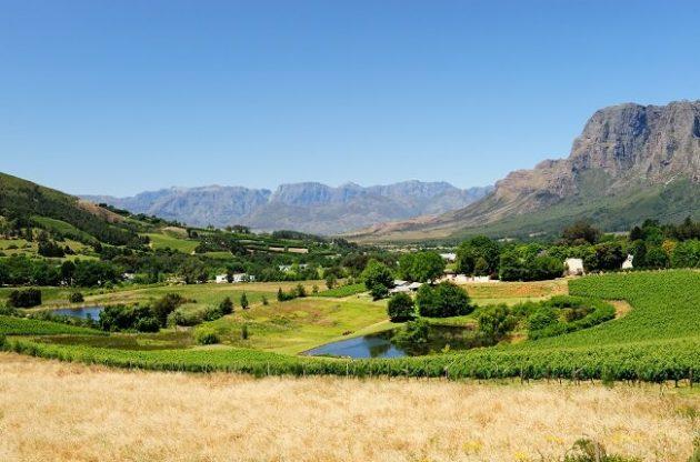 Top Stellenbosch Cabernet Sauvignon