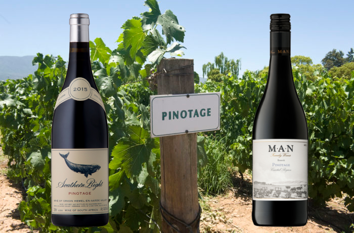 South Africa's Pinotage Pleasures