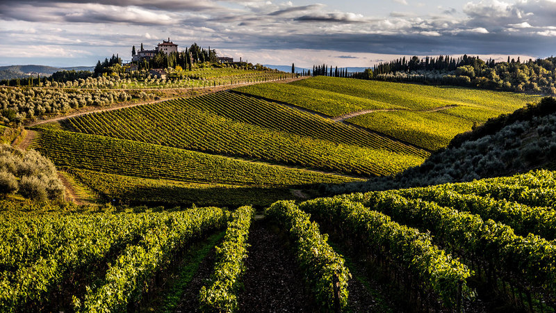 Frescobaldi Sees Strong Potential For New Chianti Classico Label