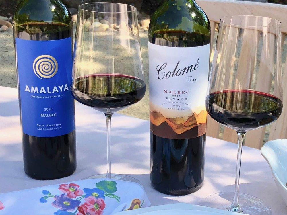 The Best Malbec Under $20 - The Reverse Wine Snob Picks!