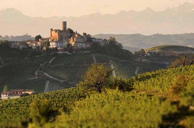 4 Must-Visit Winemakers of Barolo and Barbaresco