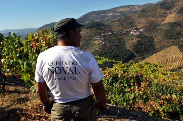 Quinta do Noval Port: A look back in time