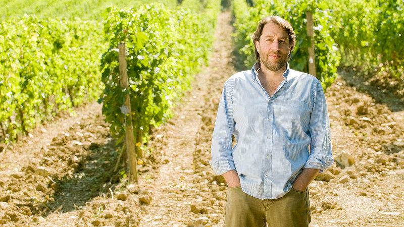 Italian Wine Company Tommasi Invests in Chianti Classico's La Massa