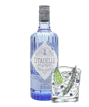 The 30 Best Gins for Every Budget