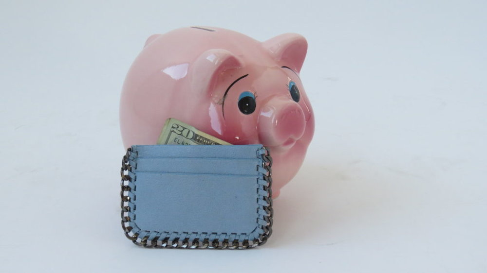 Jewelius Baby Blue credit card holder $24.50