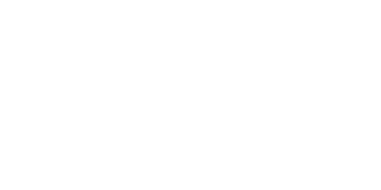 Ana Ervin | Counselor