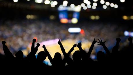 sports fans.jpg
