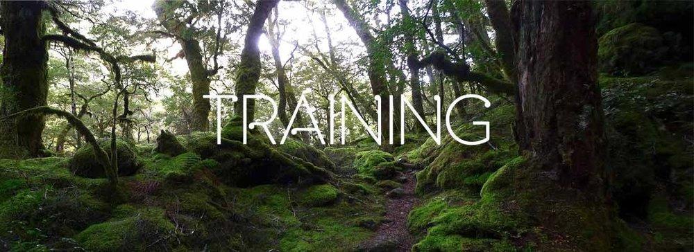 page-training2.jpg