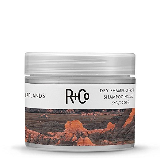 Amazing_dry_shampoo_for_fine_hair.jpg