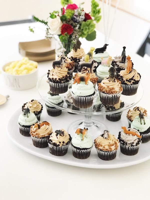 simple_third_birthday_puppy_party_cupcakes.JPG