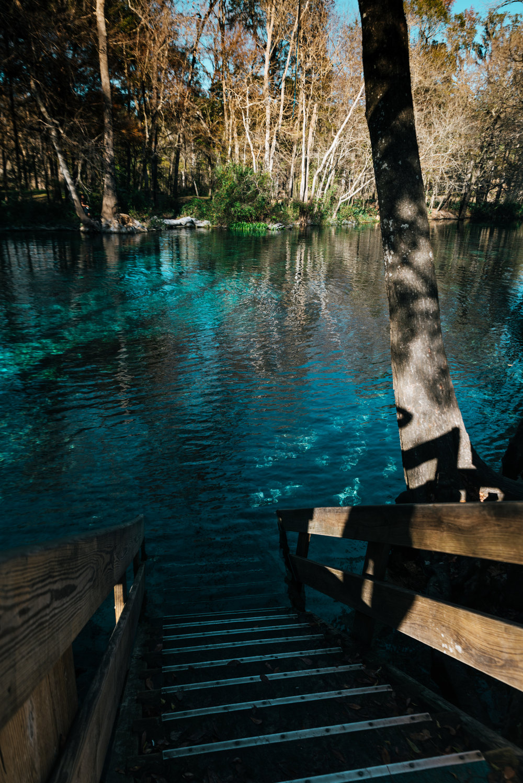 Ginny Springs, FL