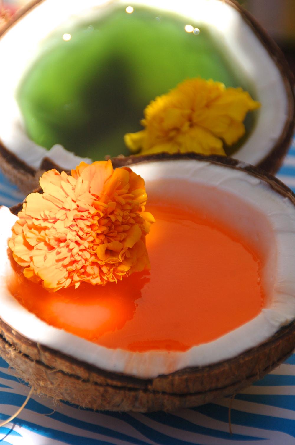 Coconut Jello Dessert