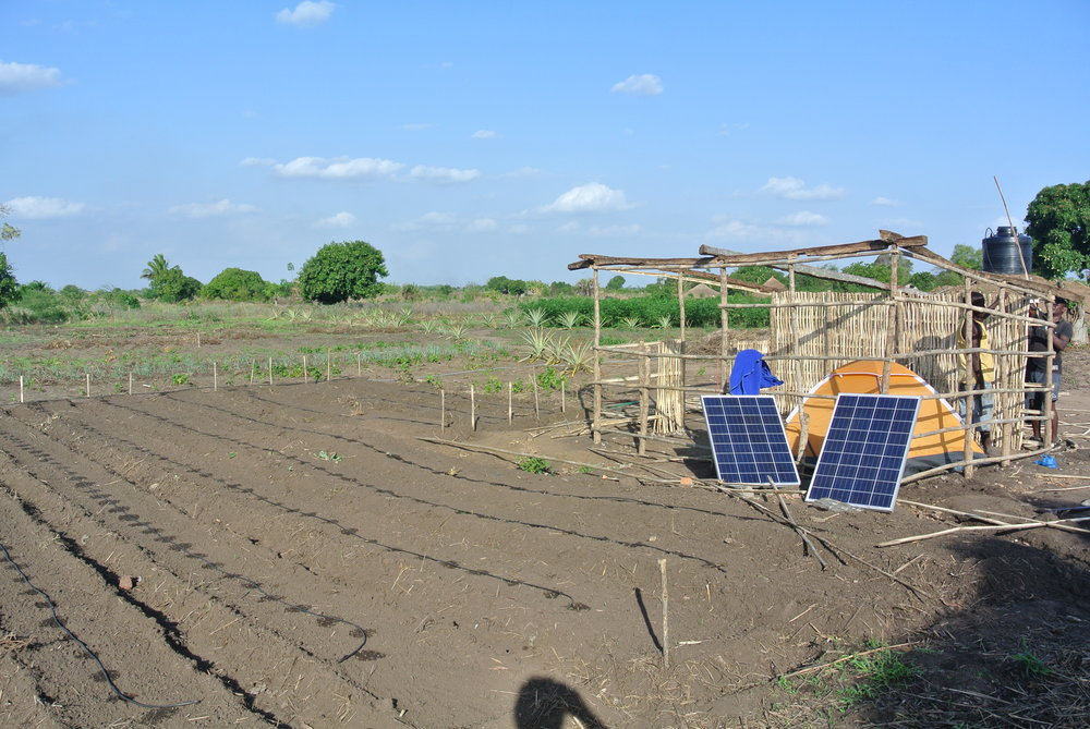 Solar Panels and Drip Irrigation.JPG