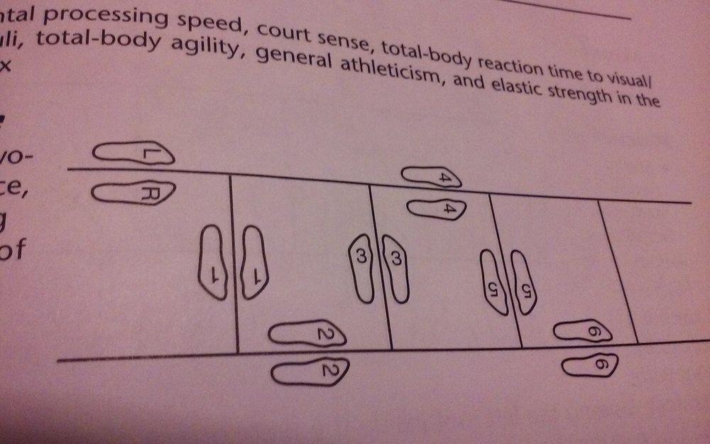 Snake Jumps.jpg