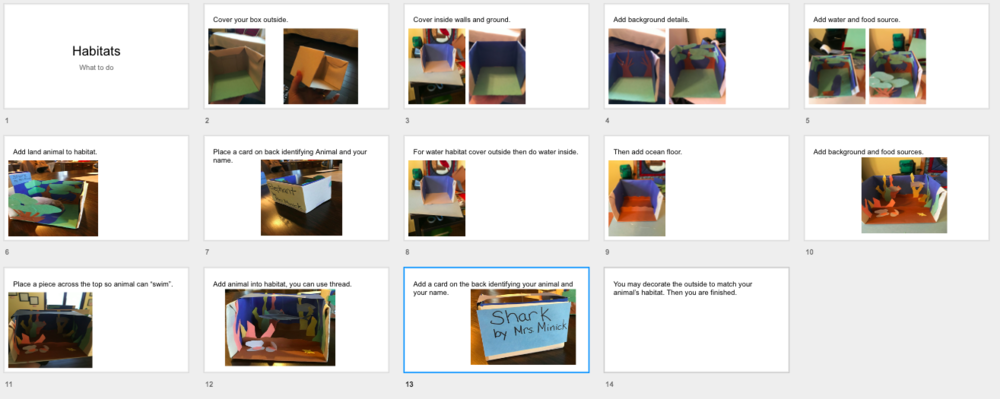 Habitat Projects - Directions made on Screencastify , embedded in slides, and shared through classroom.