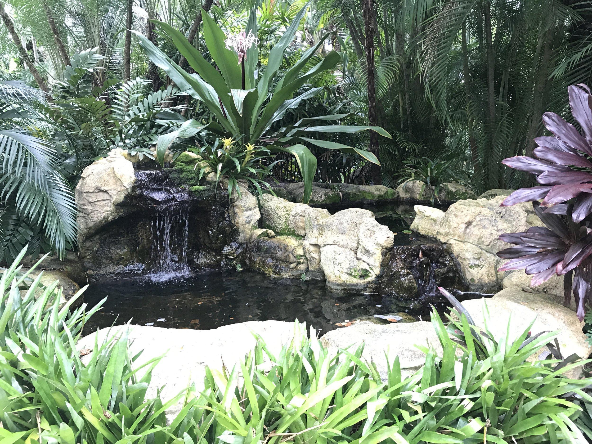 Waterfalls at Sunken Gardens, St Petersburg, FL