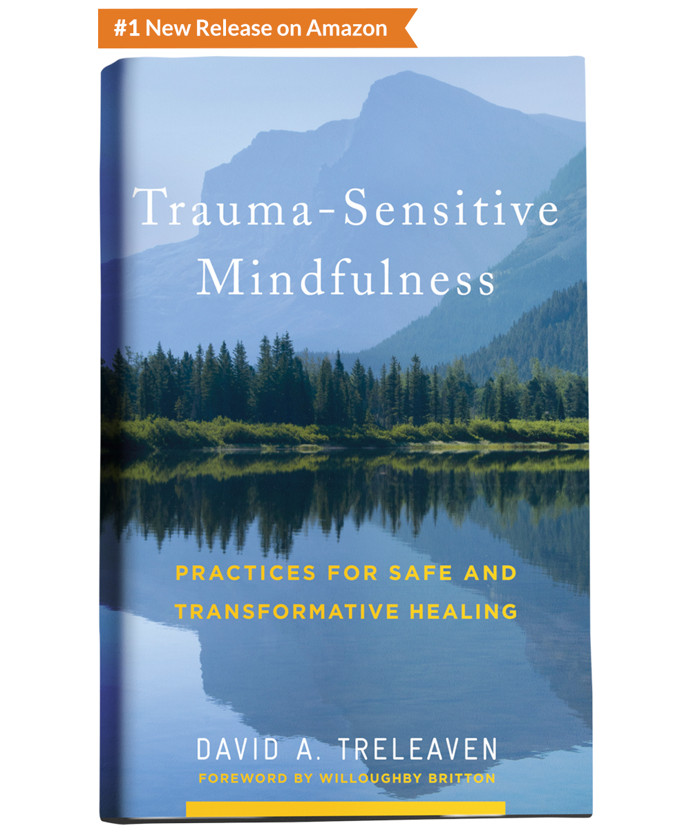 Trauma-Sensitive Mindfulness: Practices for Safe and Transformative Healing - Published by W. W. Norton & Company