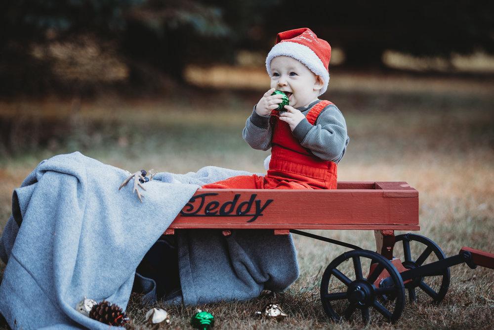 rowan Christmas cedar falls Iowa family photographer-1.jpg