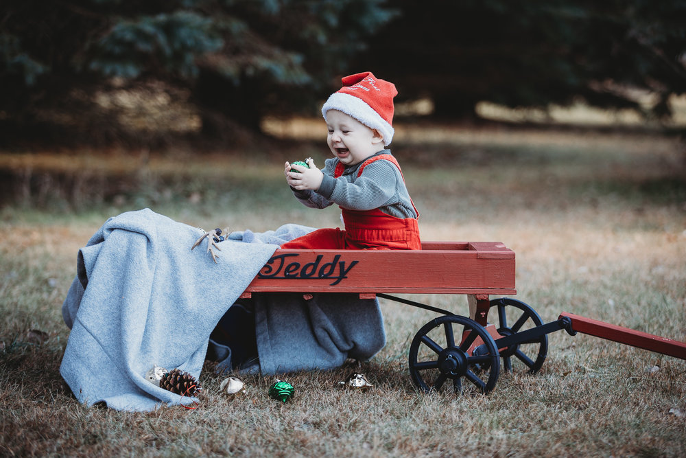 made beloved photography rowan christmas cedar falls iowa family photographer-2.jpg