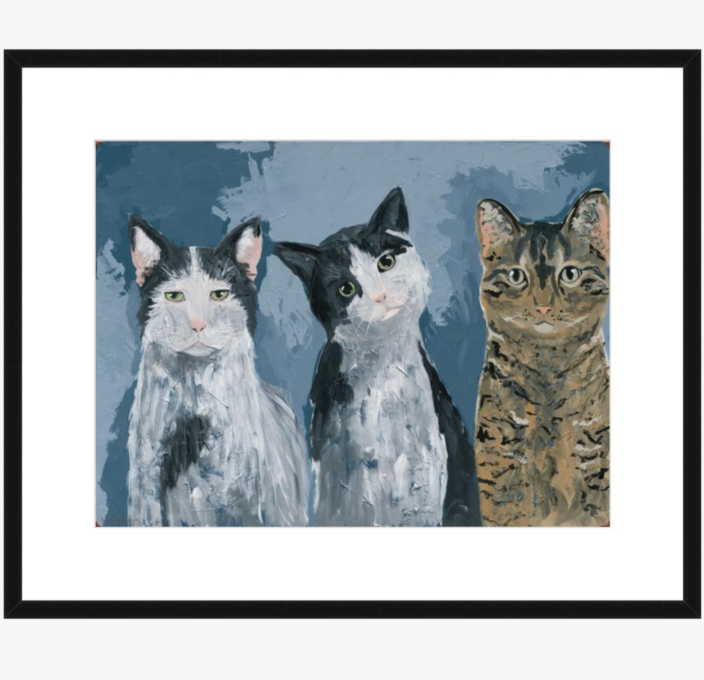 kitties -
