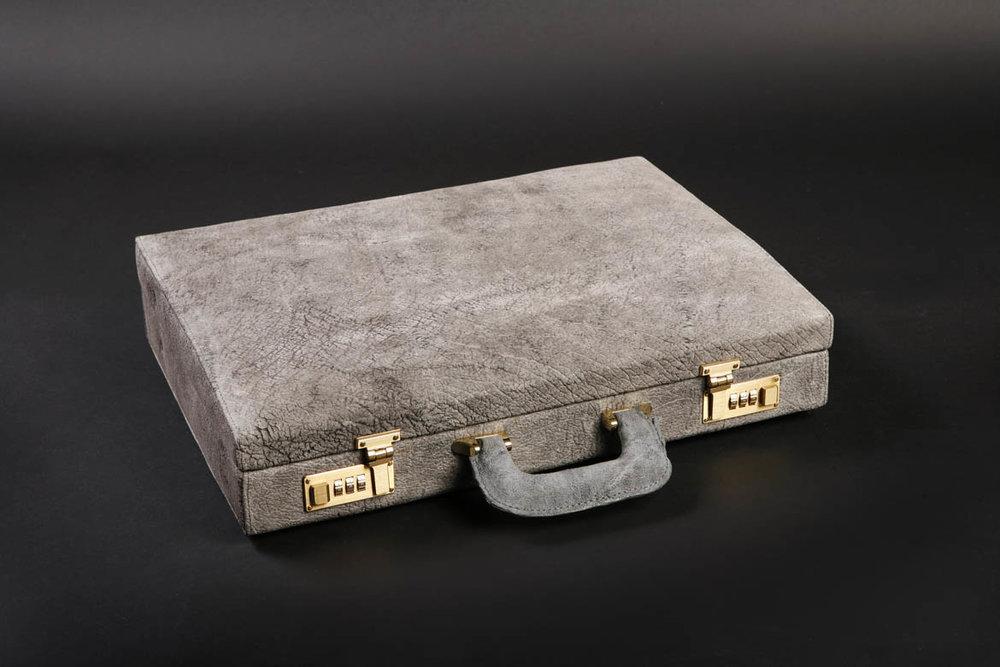 Rhino Briefcase_lying.jpg