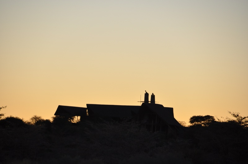 Hunt Namibia Kalahari OutPost88.JPG