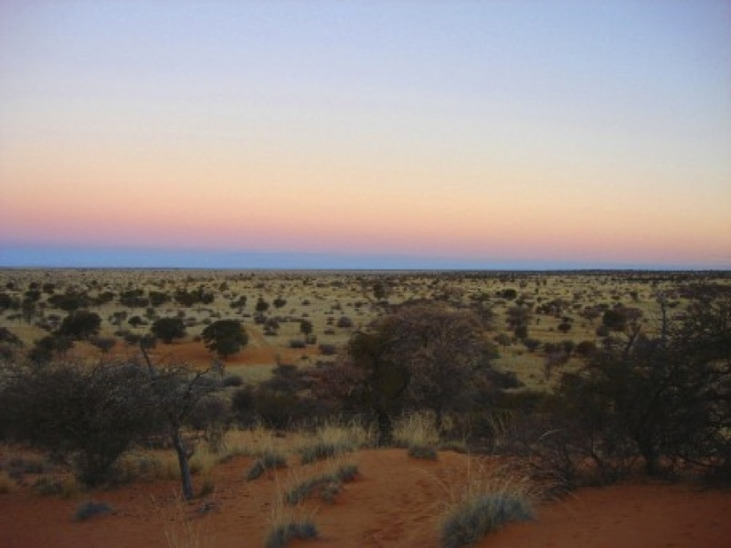 Hunt Namibia Kalahari OutPost90.jpg