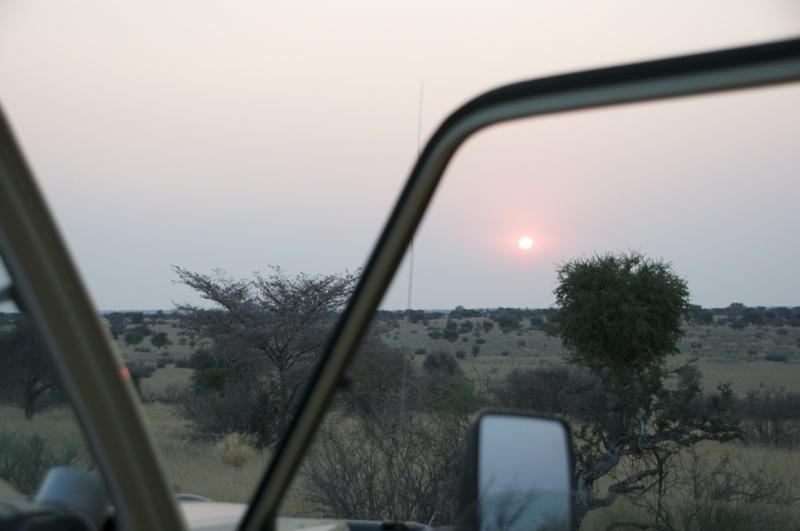 Hunt Namibia Kalahari 2OutPost87.jpg