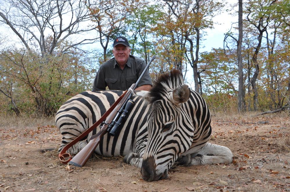 Zebra Hunt06.JPG