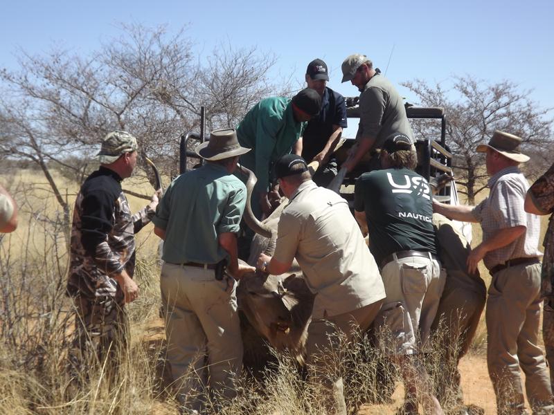 hunt in africa.jpg
