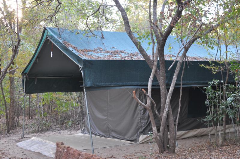 Tanzania hunting5.JPG