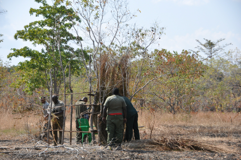 Tanzania hunting36.JPG