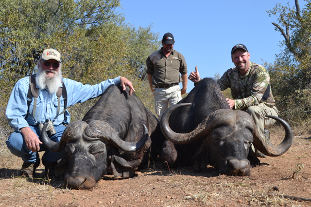 Hunt in Africa- Cape Buffalo hunting