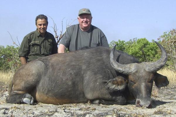 buffalo06.jpg