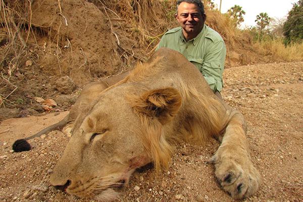 lion09.jpg
