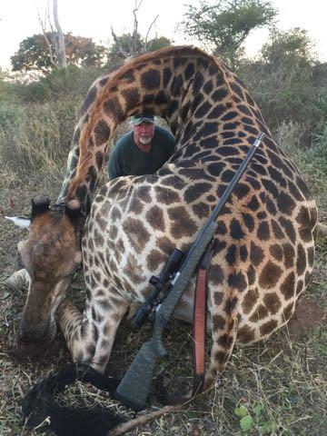 Hunt in Africa 13.jpg