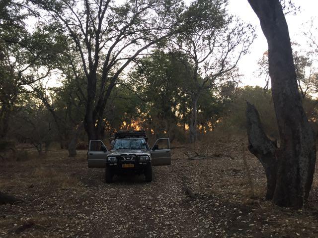 Hunt in Africa 63.jpg